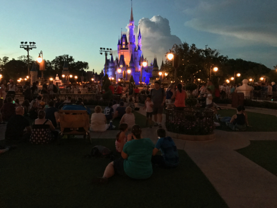Garden viewing in front of Cinderella Castle
