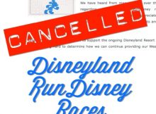 Disneyland Races Cancelled