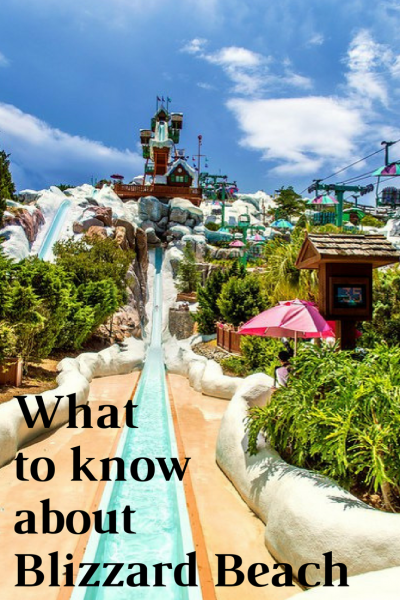 On Past Trips To Walt Disney World We Visited Blizzard Beach Several Times Some Prior Children And Other With Our There Are Many Ways You Can