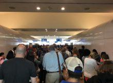 Maddie TSA Tips 2