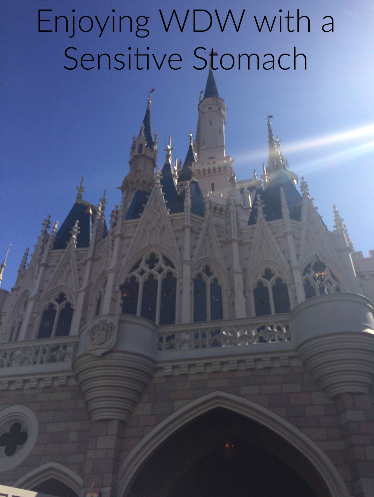 Sensitive stomach and motion sickness at Walt Disney World