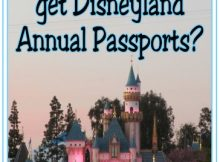 Family Disneyland annual passports