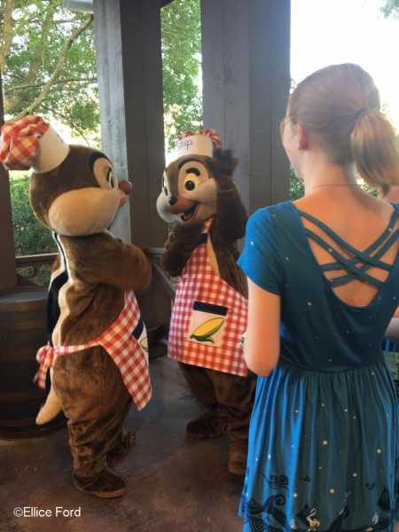 free and affordable Disney World bucket list items