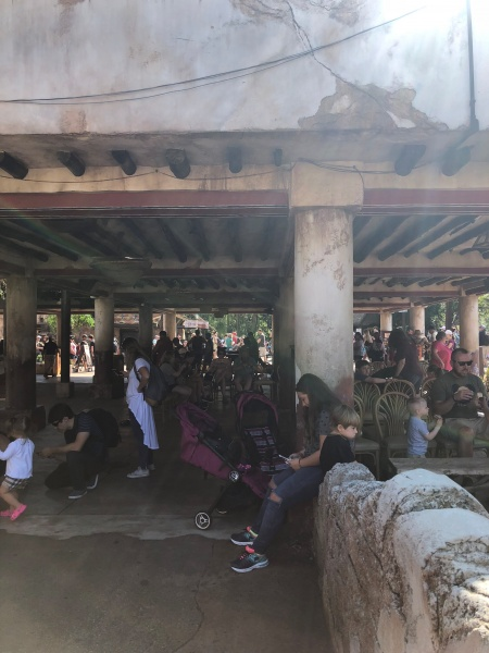 Tusker House Shaded Waiting Area