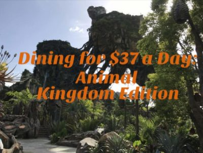 Disney Dining, Dining for $37 a Day: Animal Kingdom Edition