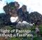 Floating Mountains of Pandora