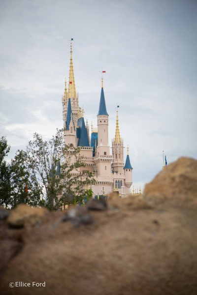 Canadian's Guide to Walt Disney World