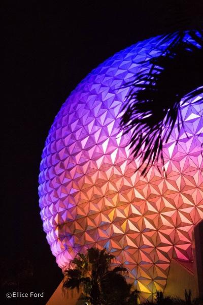 Canadian's Guide to Walt Disney World