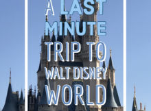 Last minute trip to Walt Disney World