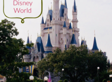 A Solo trip to Disney