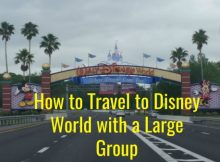 How to Travel to Disney World with a Large Group