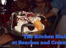 Beaches and Cream Kitchen Sink