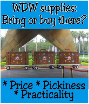 Bring or buy Disney trip supplies?