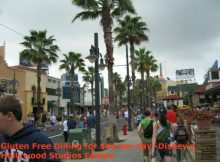 Gluten Free Dining for $44 per day Disney's Hollywood Studios Edition