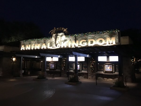 Still dark at Animal Kingdom Extra Magic Hours