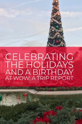 Celebrating The Christmas Holidays And A Birthday At Walt Disney World