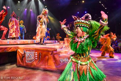 Festival of the Lion King Dining PackageFestival of the Lion King Dining Package