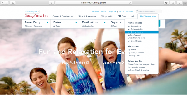 Online check-in for the DCL website