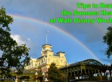 Summer Heat at Walt Disney World