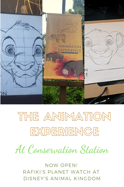 All New! The Animation Experience at Conservation Station
