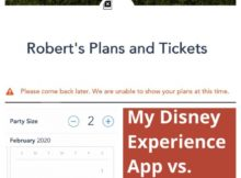 My Disney Experience App Vs. Website
