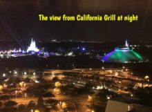 View from California Grill at night