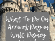 What to Do on Arrival Day: Toddler Edition