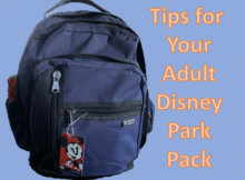 Adult Disney Park Bag