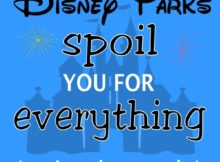 Disney parks spoil everything