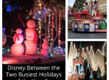Disney Between the Two Busiest Holidays of the Year for Christmas Experiences