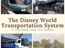 Disnety World Transportation System