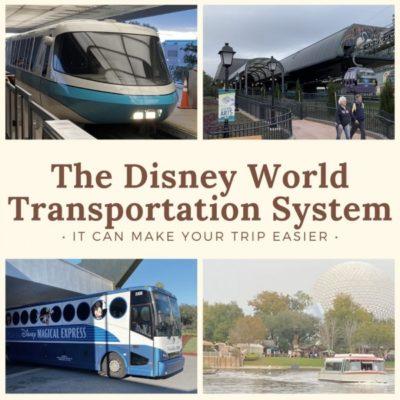 Disnety World Transportation System