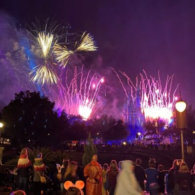 Disney World Fire Works Dinners