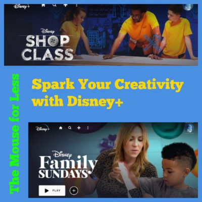 Disney Plus Crafts