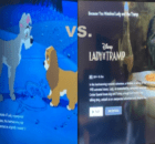 Animated Lady and the Tramp vs. the Live-Action the Lady and the Tramp