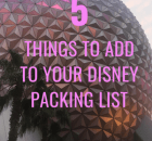 Five Things to Add to your Disney Packing List