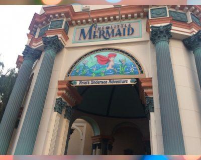 Disneyland planning
