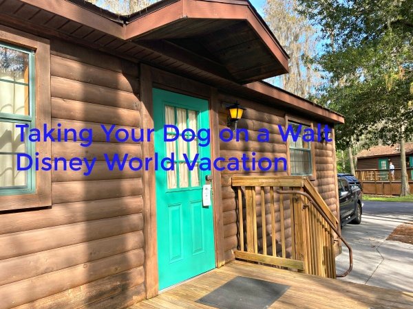 Taking Your Dog on a Walt Disney World Vacation