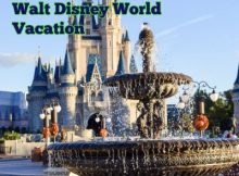 10 Things Your Might Not Realize at Walt Disney World