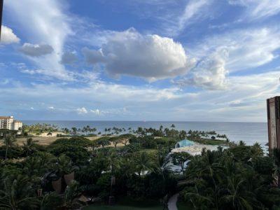 Oceanview Room View