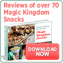 Disney Food Blog Guide to Magic Kingdom Snacks
