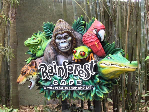 Rainforest Cafe Party Invitations