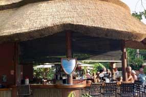 Reviews of Uzima Springs Pool Bar - Animal Kingdom Lodge
