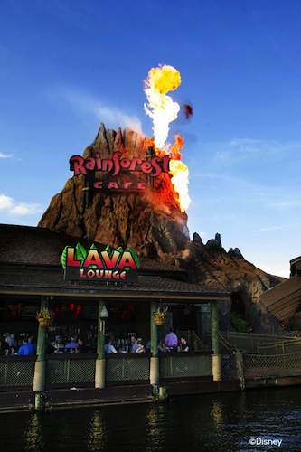 Reviews of Rainforest Lava Lounge at Disney Springs Marketplace