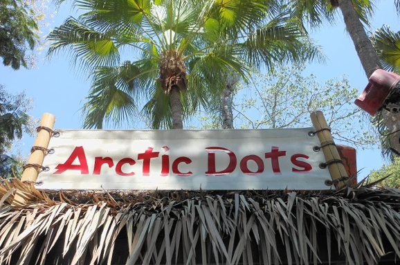 Reviews of Arctic Dots at Disney's Typhoon Lagoon