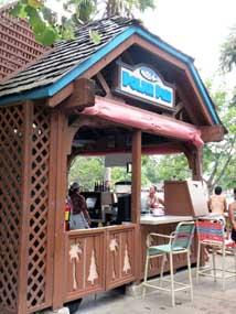 Reviews of Polar Pub at Disney's Blizzard Beach