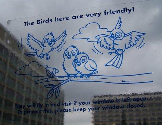 Window Warning
