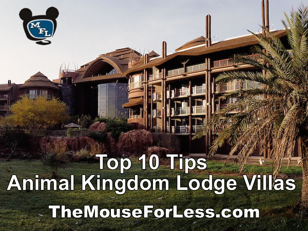 Disney's Animal Kingdom Lodge Top Ten Tips