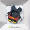 Magic Band Accessories