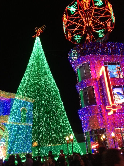 Osbourne Lights Tree